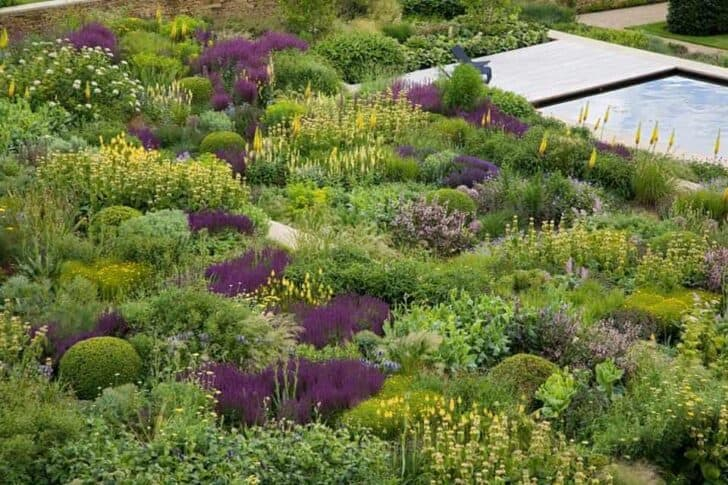 Tom stuart smith yorkshire garden botanical landscape for Garden design yorkshire