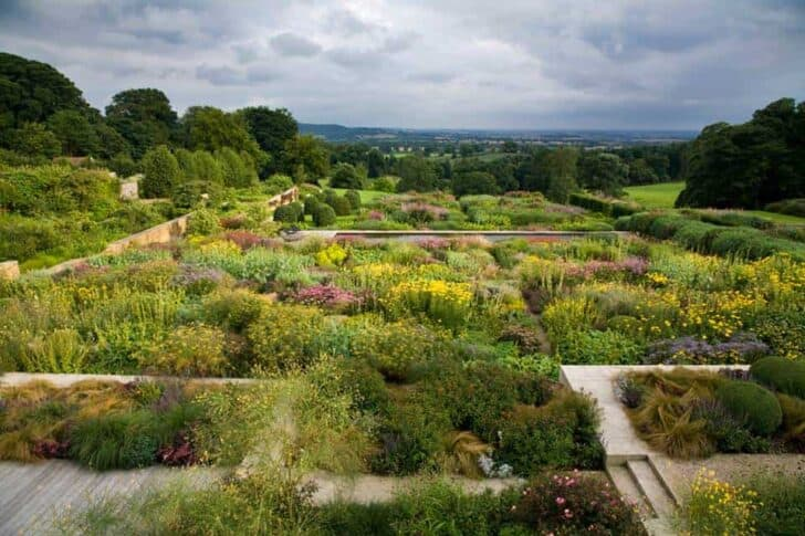 Tom Stuart Smith Yorkshire Garden Botanical Landscape