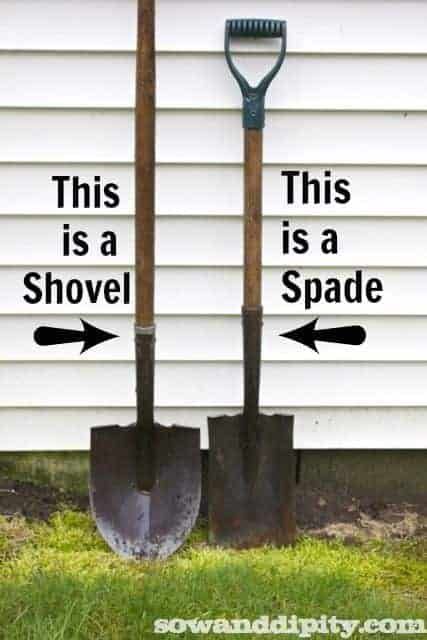 9 Essential Garden Tools for Your Shed - flowers-plants-planters