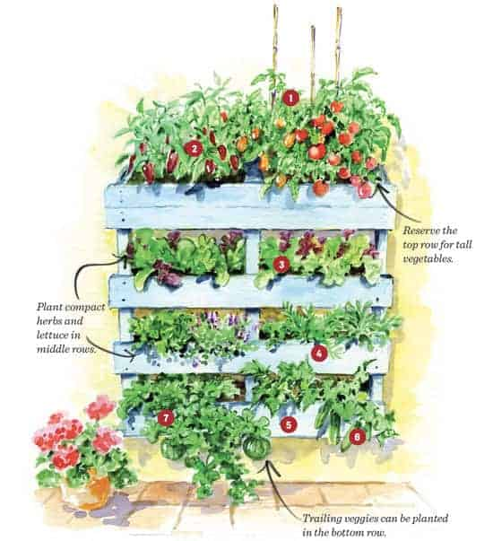 How to Build Your Own Vertical Pallet Garden Flowers, Plants & Planters