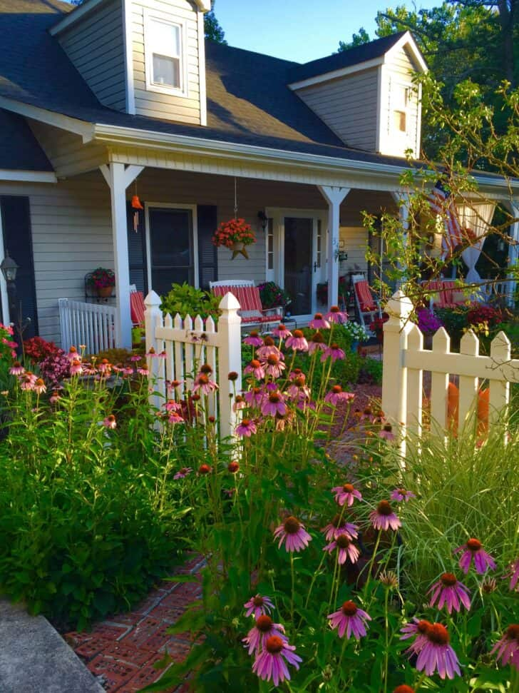 Picket Fence Garden - fences