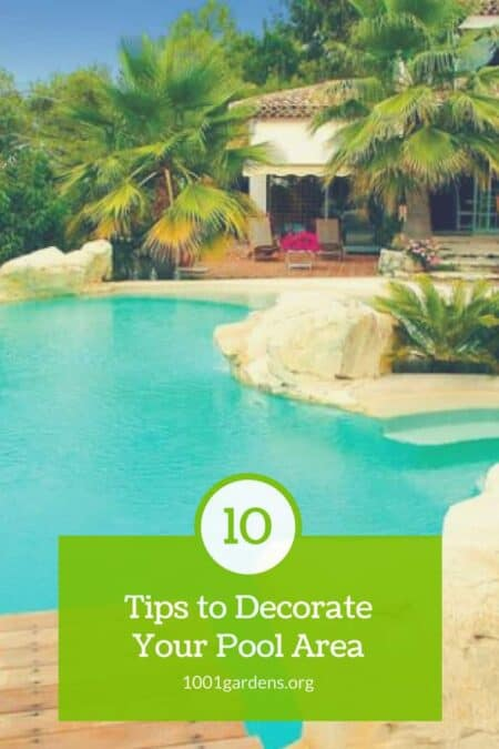 10 Tips to Decorate Your Pool Area 6 - Swimming Pools & Hot Tubs - 1001 Gardens