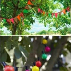 8 Ideas to Decorate Trees