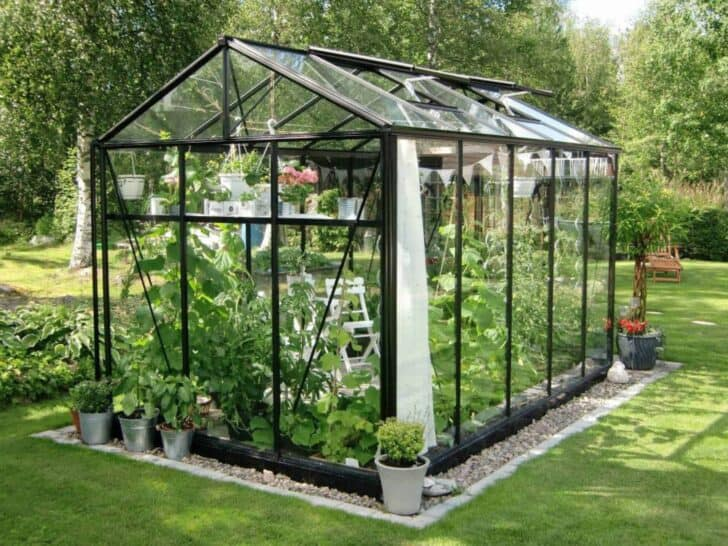 Buying Guide How to Choose a Garden Greenhouse 1001 Gardens