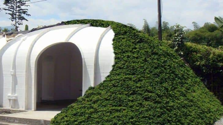 Diy eco hobbit house kit 1001 gardens for Eco home kits