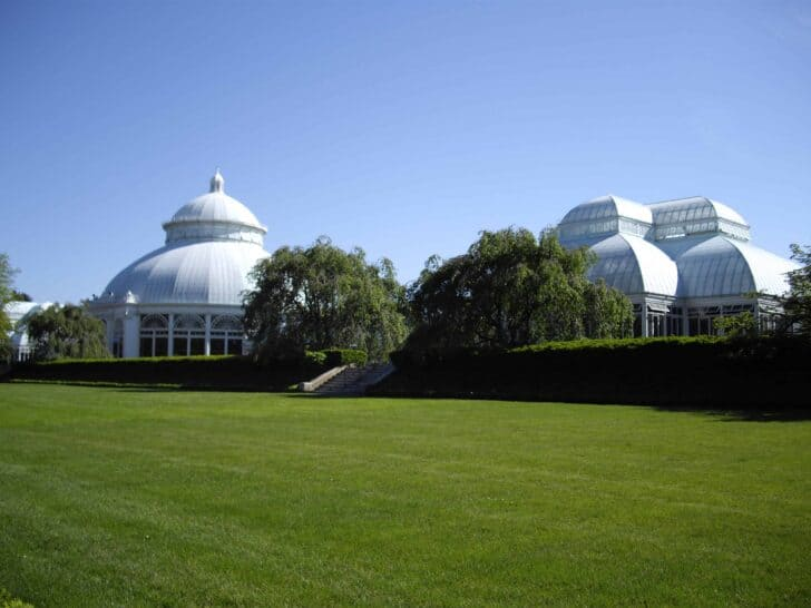 The Most Beautiful Botanical Parks of New York - landscaping