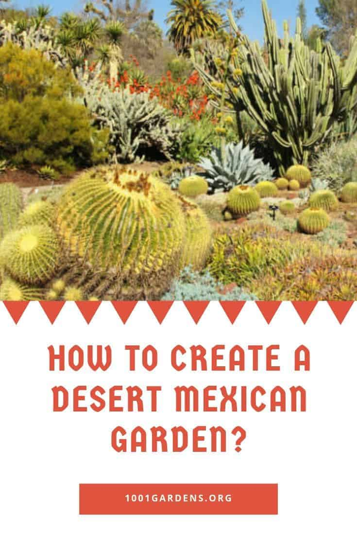 How To Create A Desert Mexican Garden 1001 Gardens