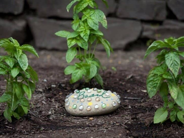Diy Ideas For Garden Decor With Pebbles And Stones Gardens