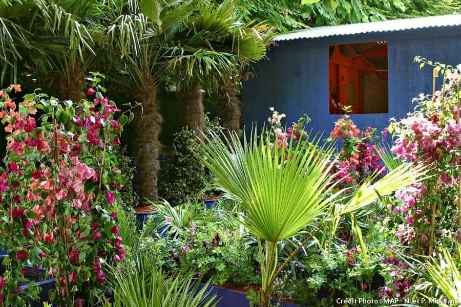 Create a sustainable tropical garden 1001 gardens for Au coin de la piscine le gardeur
