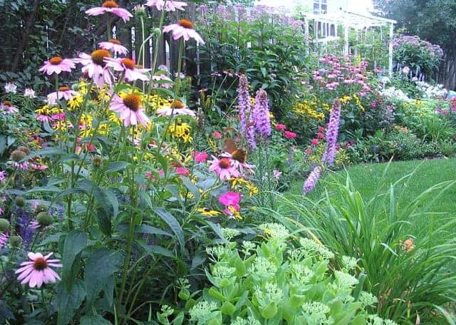 A Guide to Successfully Designing a Perennial Garden 1 - Garden Decor