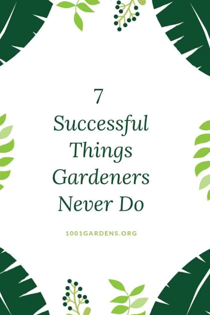 7 Successful Things Gardeners Never Do