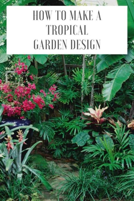 How to Make a Tropical Garden Design