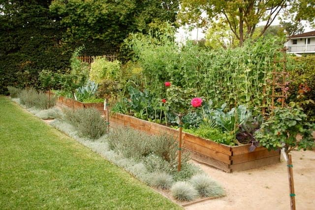 How to Build a Farmscape Effectively Flowers, Plants & Planters