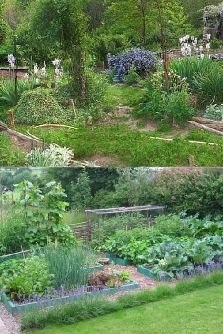 A Guide to Permaculture for the Beginners
