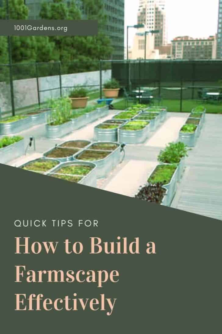 How to Build a Farmscape Effectively