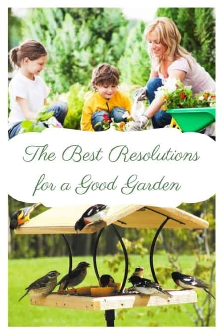 The Best Resolutions for a Good Garden Season in 2019 (updated)