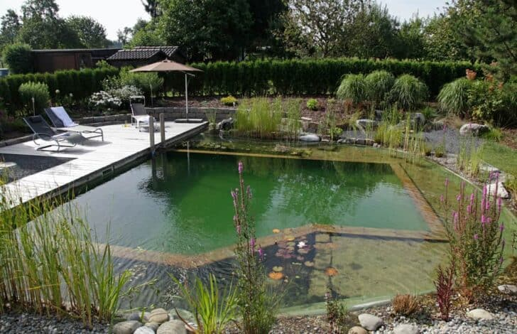 How to Build a Natural Organic Pool