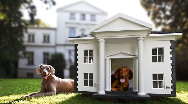 How to Choose the Best Outdoor Dog Kennel - feeders-birdhouses
