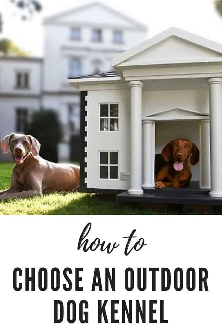 How To Choose The Best Outdoor Dog Kennel 1001 Gardens