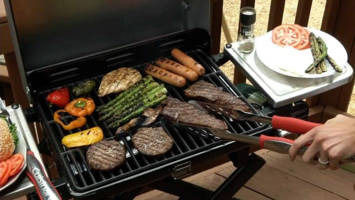 Best Portable Gas Grills 2018 - grills-bbq-firepits