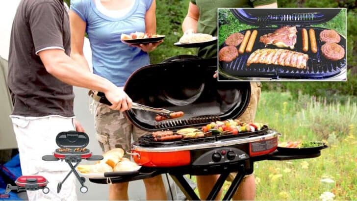 Best Portable Gas Grills 2018