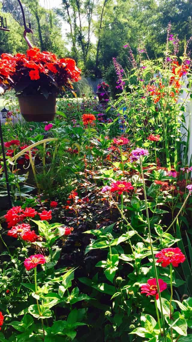 Just add it! If you like those colors and hanging baskets, perennials and annuals, just pop them into your Cottage Garden and have fun!
