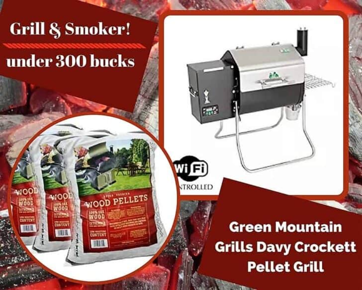 Smokin' hot, this Green Mountain Grills Davy Crockett Pellet Grill is a great alternative to our Top 6 Portable Gas Grills.
