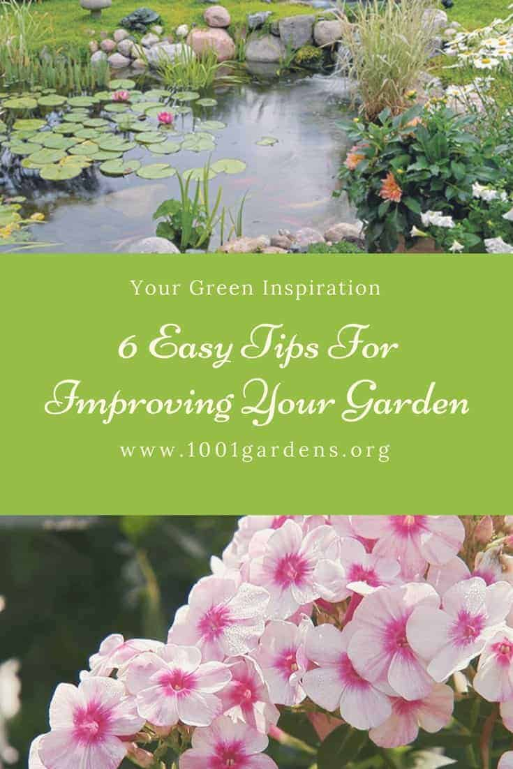 Our 6 Easy Tips For Improving Your Garden