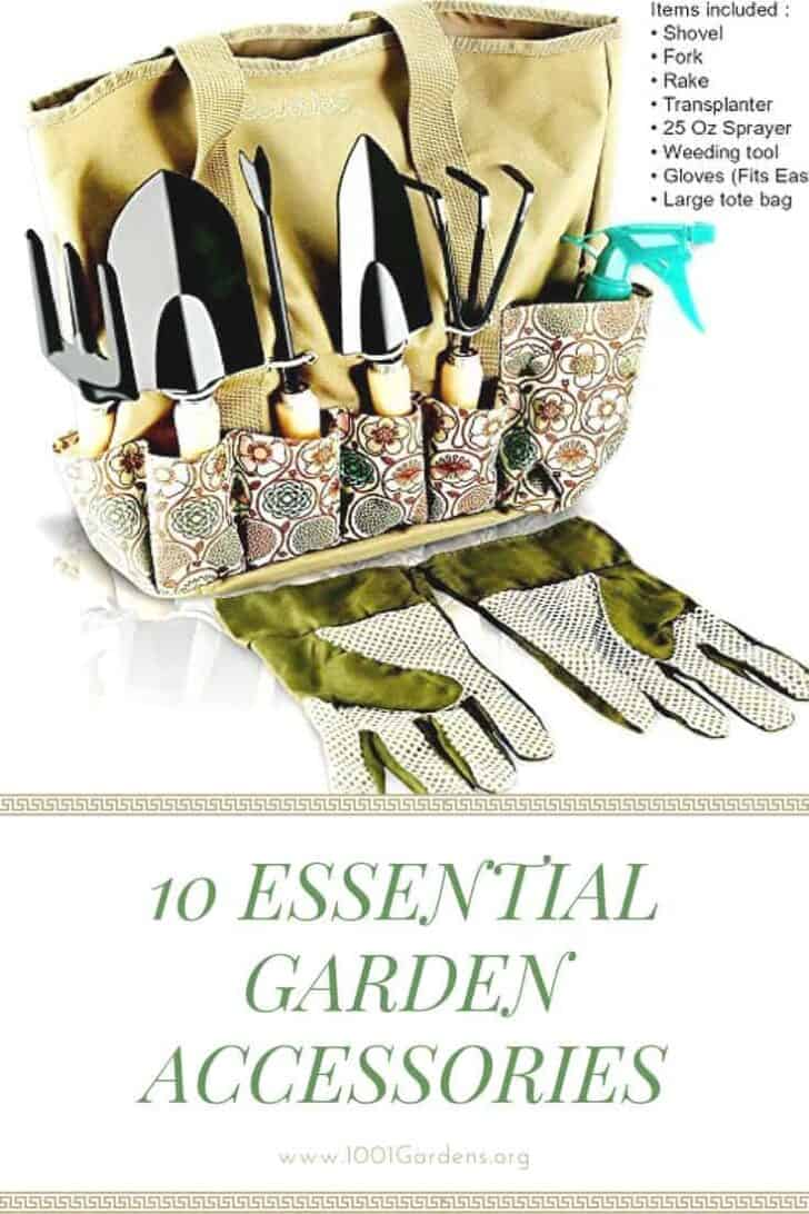 10 Essential Garden Accessories you can Buy on Amazon