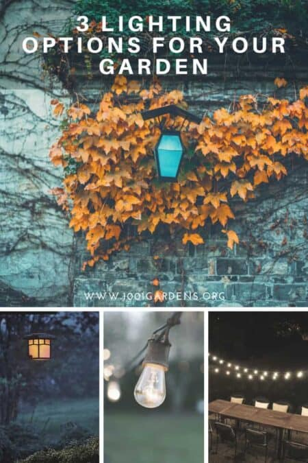 3 Lighting Options for Your Garden 1 - Outdoor Lighting