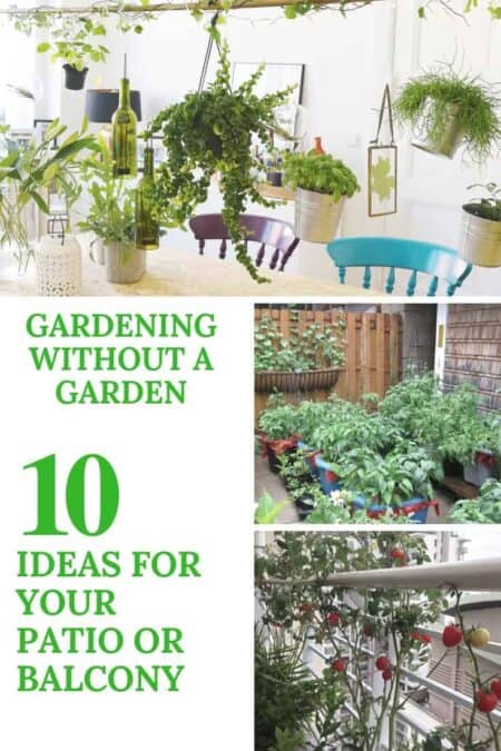 Gardening Without A Garden: 10 Ideas For Your Patio Or Balcony 2 - Urban Gardens & Agriculture - 1001 Gardens