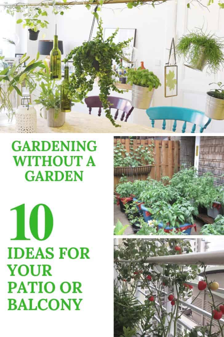 Gardening Without A Garden: 10 Ideas For Your Patio Or Balcony 5 - Urban Gardens & Agriculture
