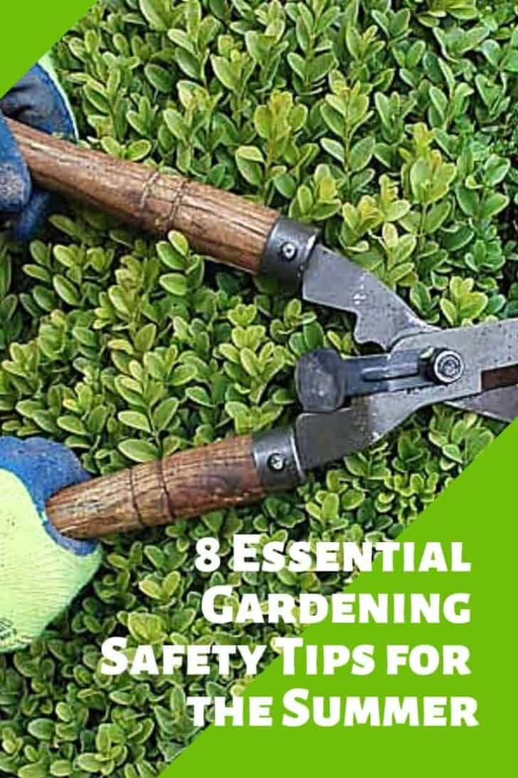 8 Essential Gardening Safety Tips for the Summer 13 - Garden Tools