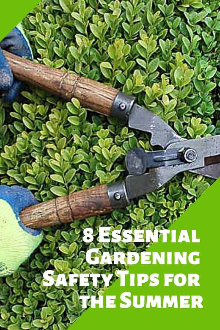 8 Essential Gardening Safety Tips for the Summer