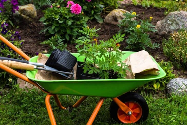 20 Must-Have Gardening Tools Every Gardener Needs: The Complete list 77 - Garden Tools
