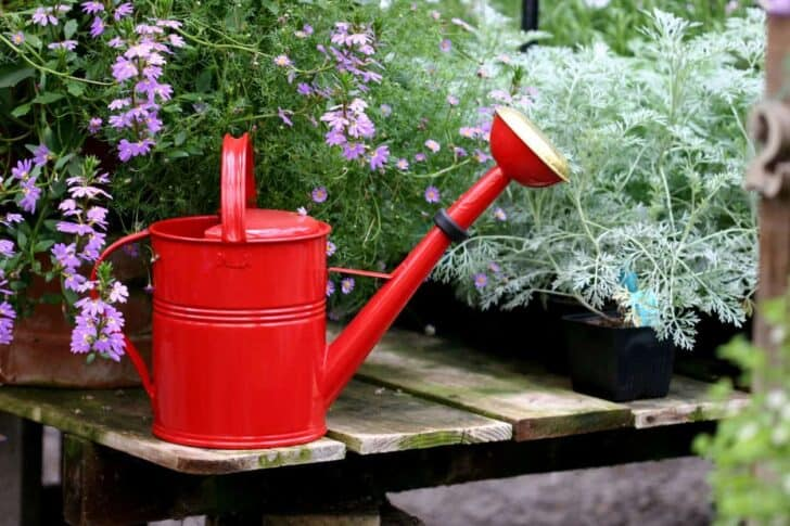 20 Must-Have Gardening Tools Every Gardener Needs: The Complete list 18 - Garden Tools - 1001 Gardens