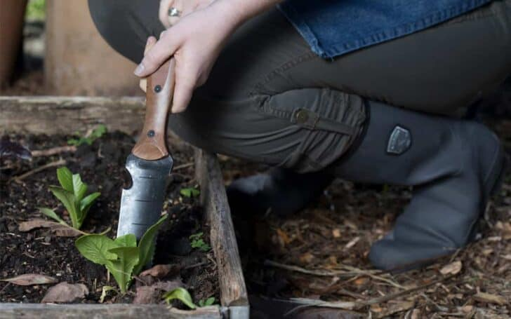 20 Must-Have Gardening Tools Every Gardener Needs: The Complete list 57 - Garden Tools