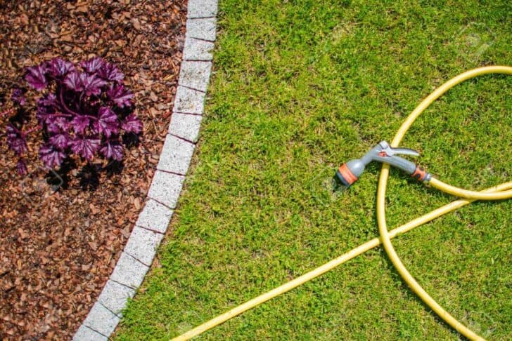 20 Must-Have Gardening Tools Every Gardener Needs: The Complete list 8 - Garden Tools - 1001 Gardens