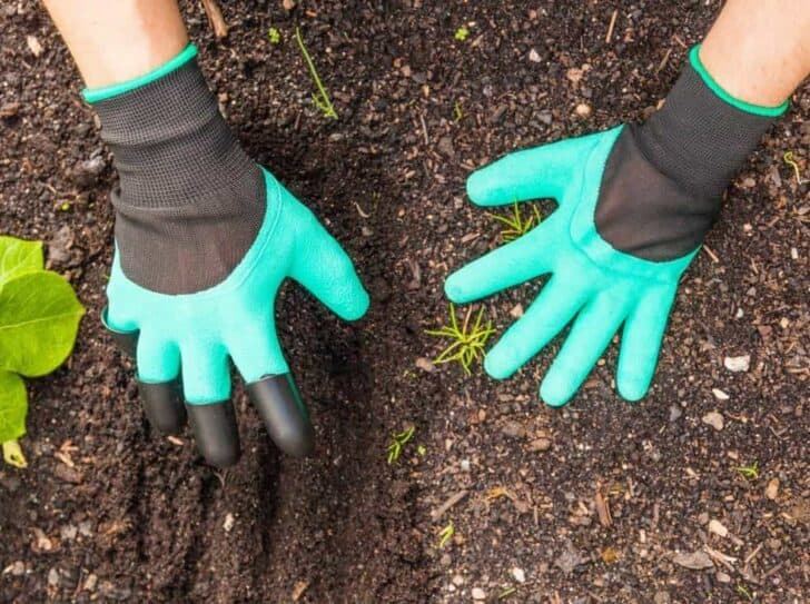 20 Must-Have Gardening Tools Every Gardener Needs: The Complete list 47 - Garden Tools