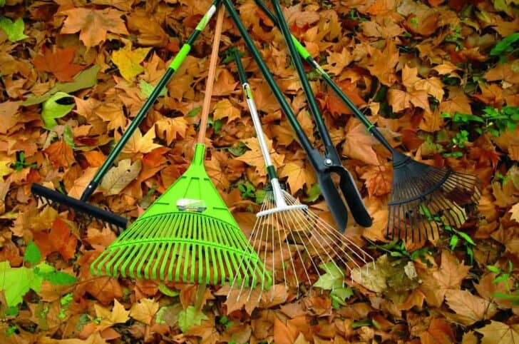 20 Must-Have Gardening Tools Every Gardener Needs: The Complete list 69 - Garden Tools
