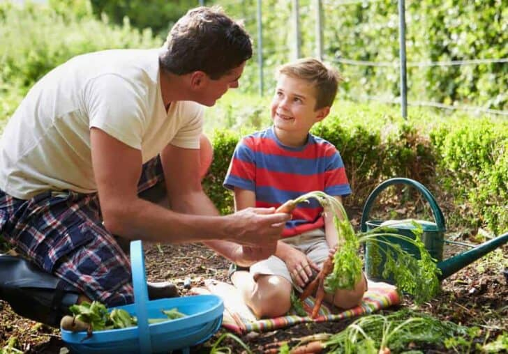Guide on Kids Gardening 2 - Kids Playhouses & Playgrounds - 1001 Gardens