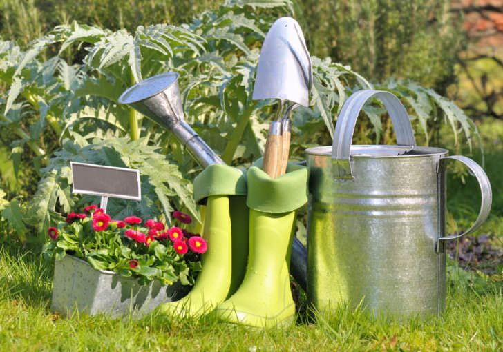 Top 7 Clothing and Accessory Items Every Gardener Should Have 31 - Garden Tools