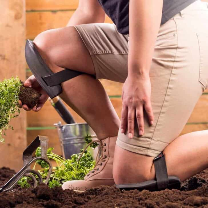 Top 7 Clothing and Accessory Items Every Gardener Should Have 37 - Garden Tools