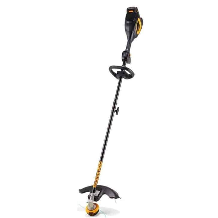 Poulan Pro PPB40T Weed Eater