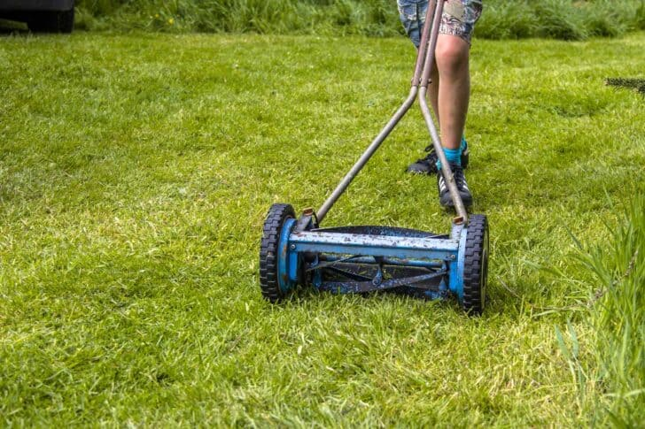 What Are The Different Types of Lawn Mowers? 2 - Garden Tools - 1001 Gardens