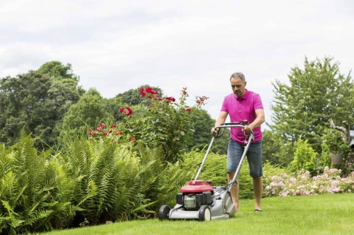What Are The Different Types of Lawn Mowers? 3 - Garden Tools - 1001 Gardens