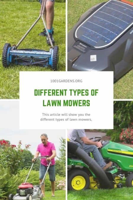 Different Types of Lawn Mowers 1 - Garden Tools - 1001 Gardens