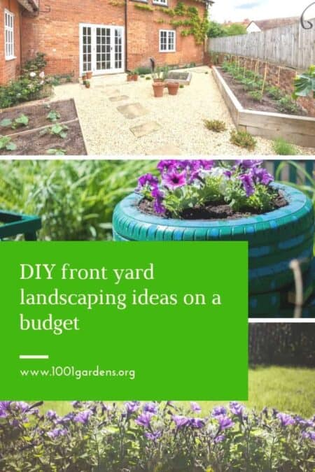 DIY front yard landscaping ideas on a budget 2 - Landscape & Backyard Ideas - 1001 Gardens