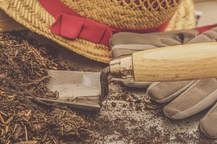 5 Essential Gardening Tools and What They Do 37 - Garden Tools