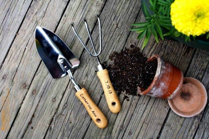 5 Essential Gardening Tools and What They Do 27 - Garden Tools